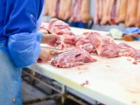 Procedures for Food Product Traceability